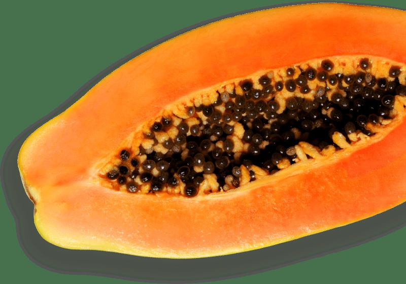 Lanolab contains papaya